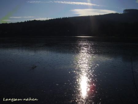 Winterlicher Wienerwaldsee Januar 2017