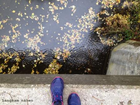 Buntes Laub und Regentropfen auf Wasseroberfläche